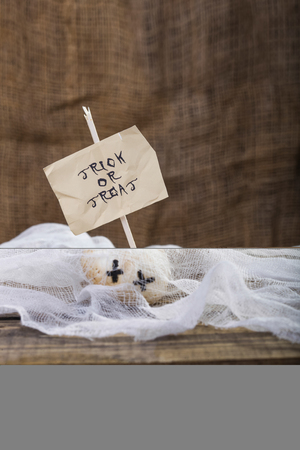 one sheet: Photo closeup still life two white champignons ghost face one with Halloween lettering trick or treat on white paper sheet on stick on wooden table on blurred gauze background, vertical picture
