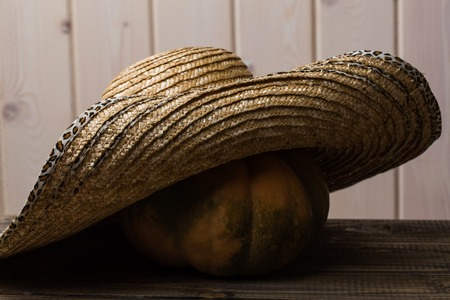 flaps: Photo rustic autumn still life one big whole fresh orange pumpkin in feminine straw hat with wide flaps broad brim on wooden table on timber background, horizontal picture