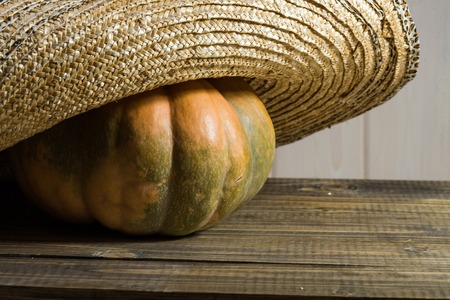 flaps: Photo rustic autumn still life closeup one big whole fresh orange pumpkin in feminine straw hat with wide flaps broad brim on wooden table on timber background, horizontal picture