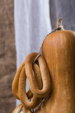bind: Photo still life closeup partial one big gourd standing with bunches of hard oval cracknels bind with string on stalk over blurred rustic background, vertical picture