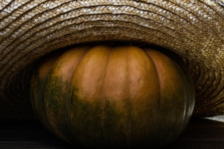 flaps: Photo rustic autumn still life closeup one big whole fresh orange pumpkin in feminine straw hat with wide flaps broad brim on wooden table on seamless background, horizontal picture