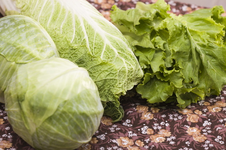 nourishment: Green foliage of bunch of juicy lettuce salad cole cabbage and chinese leaf rich of vitamins, minerals, natural organic nourishment healthy lifestyle indoor closeup, horizontal picture