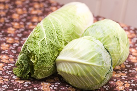 white headed: White headed cabbage and chinese leaf vegetable ingredient laying on floral table healthy nourishment natural vitamins studio closeup, horizontal picture
