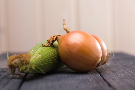 flavouring: Two shining ripe flavouring yellow onion bulbs and sweet raw green colored ear cob organic vegetables laying on dark wooden background studio closeup, horizontal picture Stock Photo