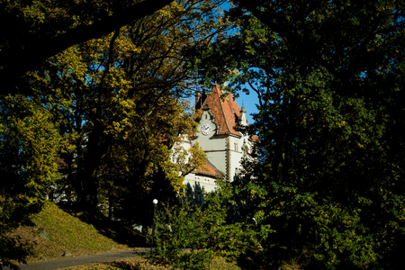 woodland scenery: Photo of beautiful old castle with clock surrounded by picturesque sun-illuminated summer park with green heavy foliage on branches of tall trees on bright blue sky background, horizontal picture