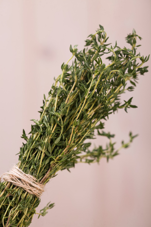 potherbs: Spicy seasoning pot-herbs with aromatic flavour ripe vibtant domestic green colored bunch of rosemary herb natural ingredient for healthy food closeup studio on light background, bertical picture Stock Photo