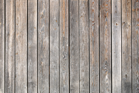 palisade: Photo closeup of old unpainted close boarded fence wooden palisade wood boards with knots on timber background, horizontal picture