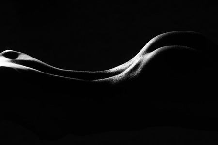 nudity young: Closeup back side silhouette view of one beautiful sexual young naked woman with flexible straight bare body and buttocks lying in shades studio black and white, horizontal picture