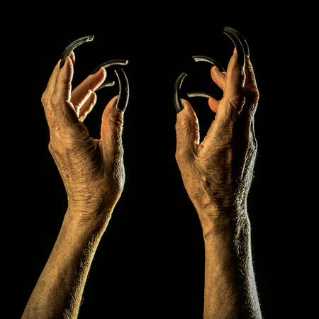 Closeup view of two female old scary mystic hands with long black nails on fingers of witch zomby demon or devil on halloween holiday character in studio indoor on dark background, square picture Standard-Bild