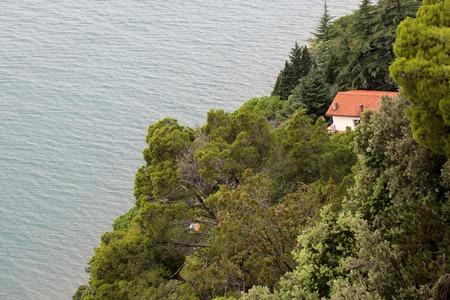arboles frondosos: Foto del primer hermosa vista desde arriba de la pequeña casa de campo en paisaje de montaña colina con bosque mixto denso de altura de hojas verdes árboles de coníferas mar con rifles en el fondo marino, cuadro horizontal Foto de archivo