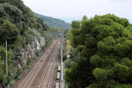 arboles frondosos: Foto de primer plano vista superior de ferrocarril de firme y las vías del ferrocarril en el paisaje de montaña colina con bosque mixto denso de altura verdes frondosos árboles de coníferas en el fondo de cielo gris, horizontal de la imagen