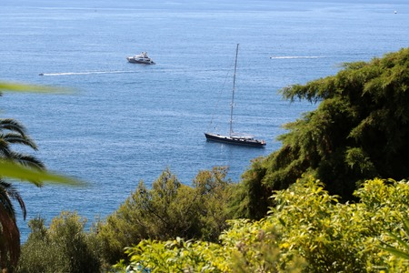 blue vessels: Photo of modern and classic yachts sailing boats vessels offshore in calm blue sea summer time green trees silhouetted against seascape background, horizontal picture Stock Photo