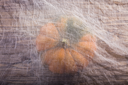Top view of one whole raw round segmented pumpkin with peduncle under white gauze on table, horizontal photo Imagens