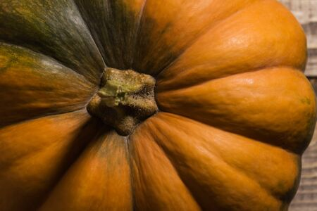 outgrowth: Top view of multifaceted stalk of ripe round orange pumpkin with smooth segmented surface and green spots, horizontal photo Stock Photo