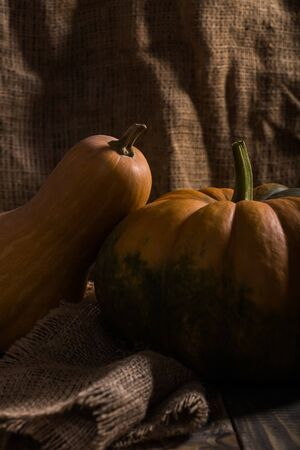 Rustic still life of two whole ripe orange calabash and round flattened with green formless blotch pumpkin decorated with burlap on wooden table, vertical photo