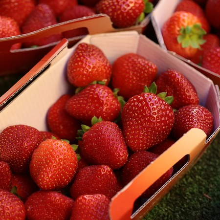 paper bags: Photo closeup full of clean organic natural fresh tasty ripe red garden strawberry fruit vitamin for healthy eating nutrition diet for sale in paper bags on blurred background, square picture Stock Photo