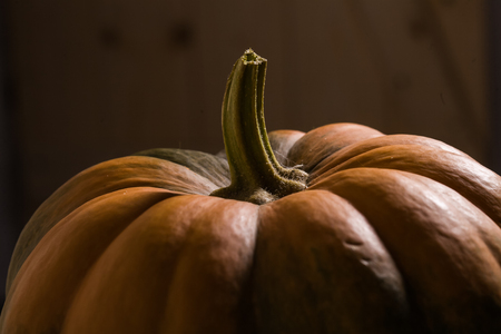 Closeup photo of top part of ripe orange segmented squash with peduncle and smooth peel in shade, horizontal picture