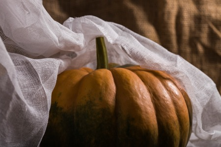 Big round flattened orange squash with peduncle smooth segmented surface and green blotch covered with white cheesecloth on burlap background, horizontal photo