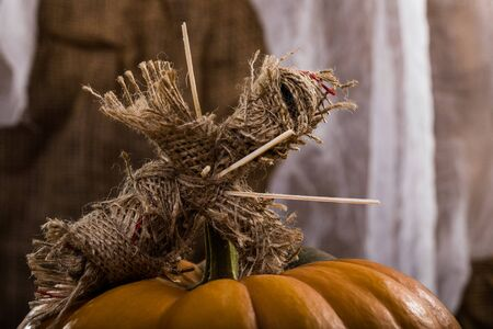 damnation: Closeup photo of Halloween burlap voodoo doll pierced with sticks on chest lies on peduncle of round orange segmented squash on white and brown cloth background, horizontal photo