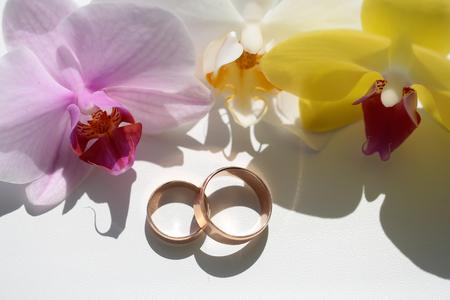 Zwei Herrliche Elegante Ringe Der Goldenen Hochzeit Brautschmuck