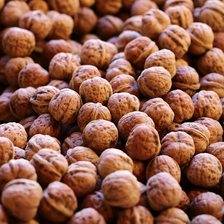 husks: Photo closeup of many fresh tasty ripe walnuts in brown husks shells stone fruit edible seeds nuts full of vitamin for healthy eating for sale on natural background, square picture