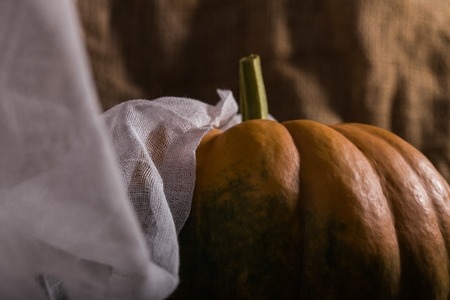 Raw orange segmented cucurbita with peduncle and green formless spots covered with white air cloth on burlap background, horizontal photo