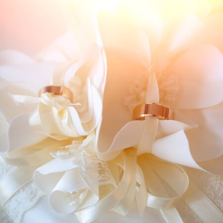 splendid: Pair of splendid elegant fashion golden rings jewelry made of yellow gold metal on beautiful tender creamy textile lace flowers for marriage ceremony day studio closeup, square picture