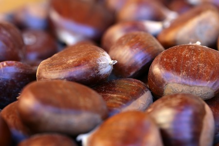 husks: Photo macrography of many fresh tasty ripe sweet chestnut brown husks fruit edible seeds nuts full of vitamin for healthy eating for sale on blurred background, horizontal picture