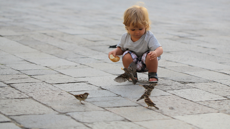 flagstone: Photo closeup of cute fair-haired blond kid tiny little child baby boy feeding sparrows with bun sitting on haunches on flag-stone pavement cityscape on blurred grey background, horizontal picture
