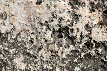 costal: Photo closeup of costal beach sharp salty brown beige rock stone formations minerals solid layer on natural background, horizontal picture