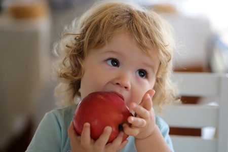 Cute fair-haired blond hazel-eyed kid little child baby boy biting and eating big red apple fruit portrait on blurred background, horizontal picture Banque d'images