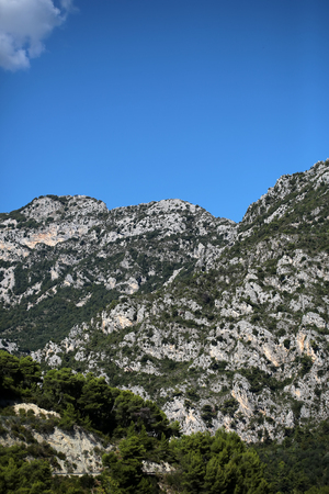 plan éloigné: Photo long shot of evergreen tall trees on beautiful heads tops of mountains with cliffs natural elevation of earth surface white cloud on bright blue sky on landscape background, vertical picture Éditoriale