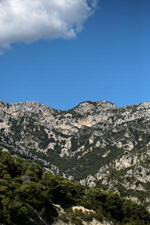 plan �loign�: Photo long shot de grands arbres � feuilles persistantes sur de belles t�tes sommets des montagnes avec des falaises �l�vation naturelle de la surface de la terre nuage blanc sur le ciel bleu clair sur fond de paysage, image verticale Banque d'images