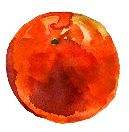 technics: Beautiful ripe tropical sweet orange citrus fruit painted by watercolor technics freehand illustration on white background hand drawn postcard print textile decor Stock Photo
