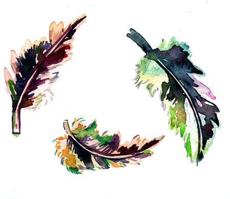 technics: Three colorful bright decorative feathers illustration drawing by watercolor technics freehand artistic artwork hand drawn backdrop textile fabric