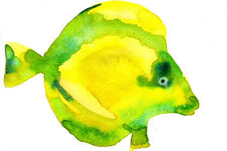 tang: Watercolor hand drawn illustration of bright yellow tropical tang aquarium fish on white background artwork freehand design textile print greeting card Stock Photo