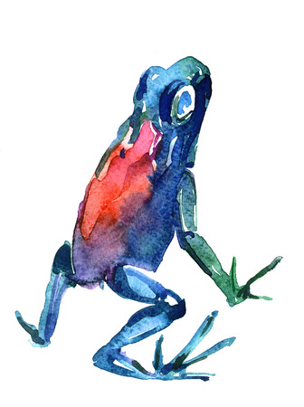 pleasing: Closeup pleasing artistic water-color aquarelle freehand sketch rough drawing and hand drawn of frog back view water paint strokes and dabs texture paper over white background, vertical picture Stock Photo