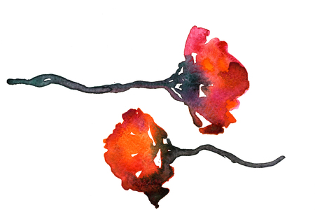 pleasing: Closeup pleasing artistic water-color aquarelle freehand rough drawing hand drawn pair of red flowers water paint strokes and dabs texture paper over white background, horizontal picture Stock Photo