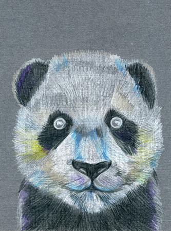 pleasing: Closeup pleasing multicolor panda catbear head muzzle pattern drawing freehand sketch art linen texture against gray colour background, vertical picture