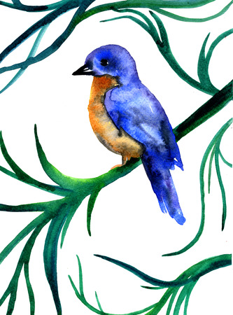 pleasing: Closeup pleasing artistic water-color aquarelle freehand sketch rough draft and hand drawn of bird side-drawn on tree branch water paint texture paper over white background, vertical picture