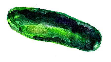dabs: Closeup pleasing artistic water-color aquarelle freehand sketch rough drawing hand drawn of cucumber water paint strokes and dabs texture paper over white background, horisontal picture