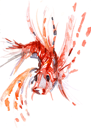 dabs: Closeup pleasing artistic water-color aquarelle freehand sketch rough drawing hand drawn of toy fish guardant water paint strokes and dabs texture paper on white background, vertical picture