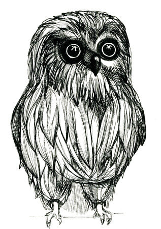 pleasing: Closeup pleasing artistic black and white owl guardant pen-and-ink drawing freehand sketch texture paper over white background, vertical picture