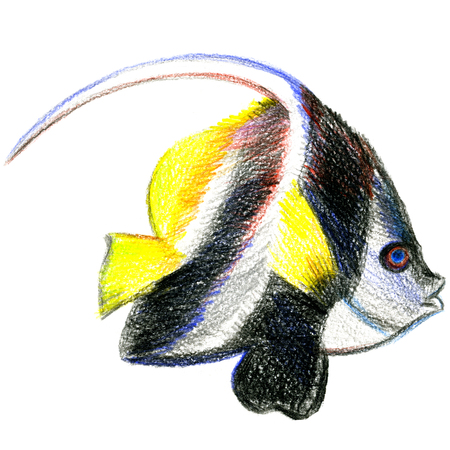 pleasing: Closeup pleasing artistic water-color aquarelle freehand sketch rough drawing hand drawn of toy fish side-on water paint strokes and dabs texture paper over white background, square picture