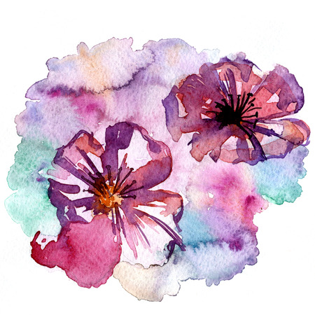 Closeup pleasing artistic water-color aquarelle freehand sketch rough drawing hand drawn of flower blossoms water paint strokes and dabs texture paper over white background, square picture