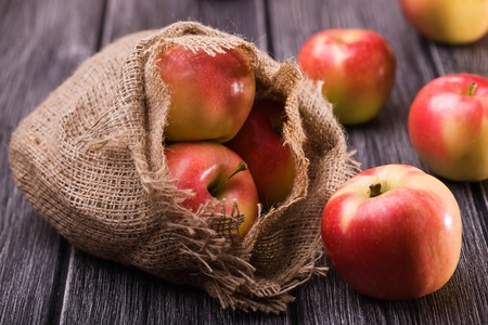 homespun: Ripe unpeeled juicy red yellow apples fall out of homespun sackcloth bag on grey wooden table, horizontal photo Stock Photo