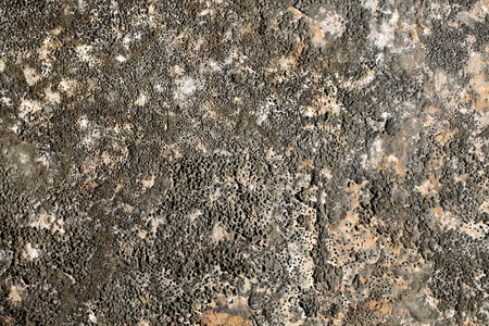 costal: Photo closeup of costal beach sharp salty brown gray rock stone formations minerals solid layer on natural background, horizontal picture