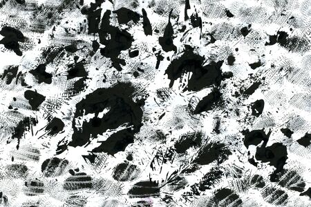 wash drawing: Abstract watercolour aquarelle hand drawn wash drawing arty grunge creative leaf prints stains and splashes black and white on paper texture background, horizontal picture