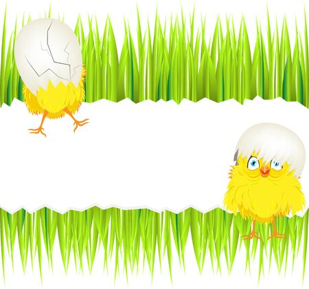 easter sunday: Bright color vector graphic illustration of happy easter sunday day with traditional spring holiday symbol of cute yellow chicken in shell on light background