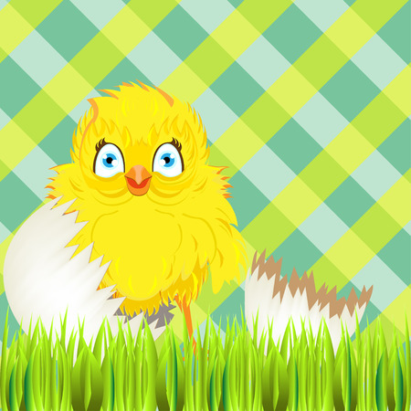 easter sunday: Bright color vector graphic illustration of happy easter sunday day with traditional spring holiday symbol of cute yellow chicken in shell on checkered background Illustration